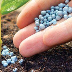 Consejos sobre aplicación de fertilizantes